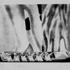 artwork_images_112962_430985_james-rosenquist.jpg